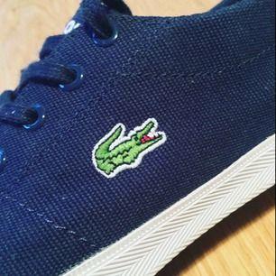 Lacoste sneakers  Mörkblå  Använda 1 gång liten i passform mer 38 enligt mig Finns i Stockholm