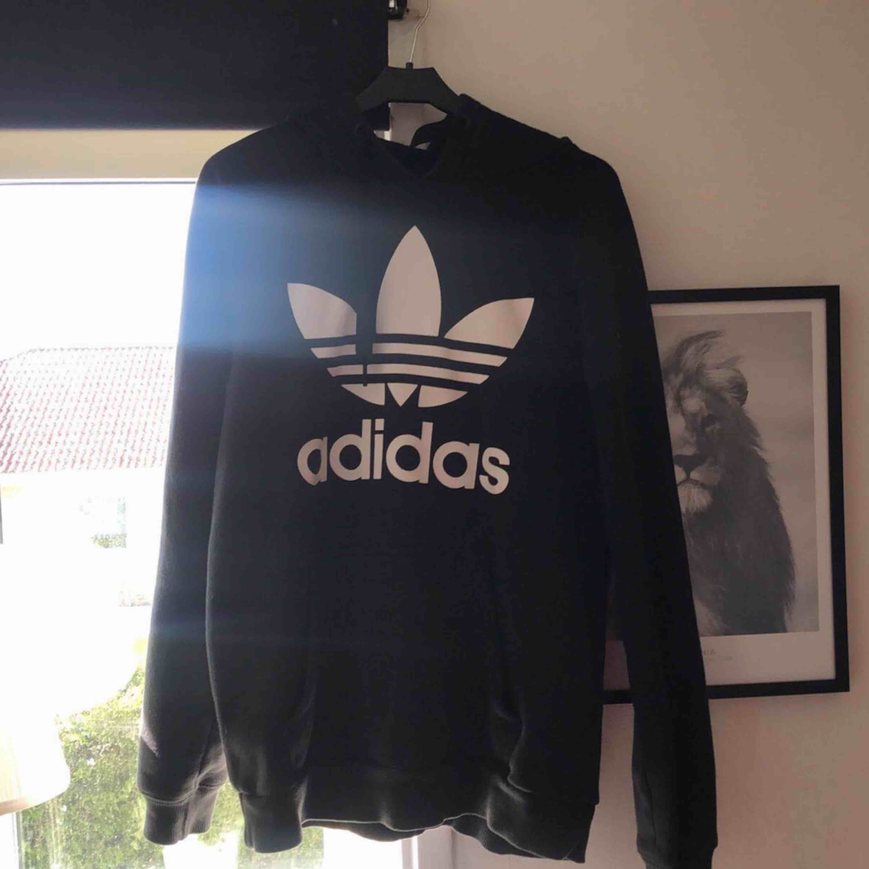 Hoodie från Adidas, storlek S. Bra skick   Köparen står för frakt!!!. Tröjor & Koftor.