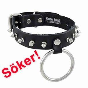 hej! skriv gärna om du själv har en svart läderchoker med spikar och kanske en ring eller vet om någon annan som säljer en!
