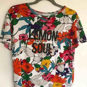 T-shirt från Zara i storlek S, lite over-sized i storleken. Använd ett fåtal gånger. Pris kan diskuteras