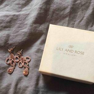 """Oanvända Lily and Rose örhängen i modellen Isabel (tredje bilden visar en bättre bild på modellen), dessa är rosa. Har tappat bort skumgummi """"plattan"""" som dom kom med, men i övrigt är dom i nyskick! Nypris 495kr. Köpare står för eventuell frakt."""