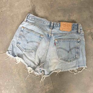 Levi 501 shorts / daisy dukes / jeans
