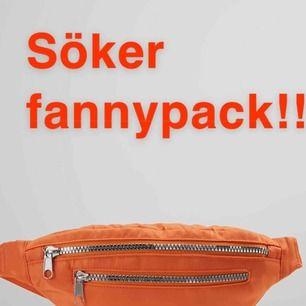 Söker en/flera fannypacks! Någon som säljer billigt, hör av dig isånnafall i kommentarerna💞