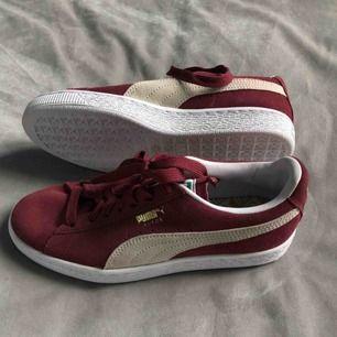 svinsnygga puma suede sneakers! aldrig kommit till användning (alltså HELT oanvända) orginalpris: 800kr. köparen står för frakt 😘