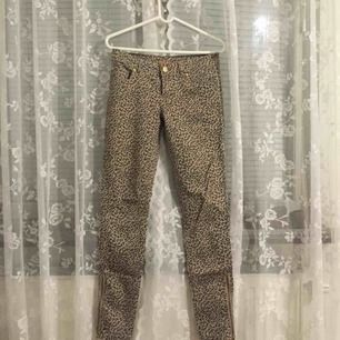 Denim beige pants in leopard pattern. I never used, got them from a friend.