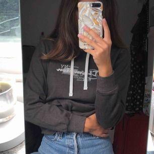 Sååå mjuk och skön hoodie från Champion i väldigt bra skick. Köparen står för frakten🧚🏼♂️🧚🏼♂️