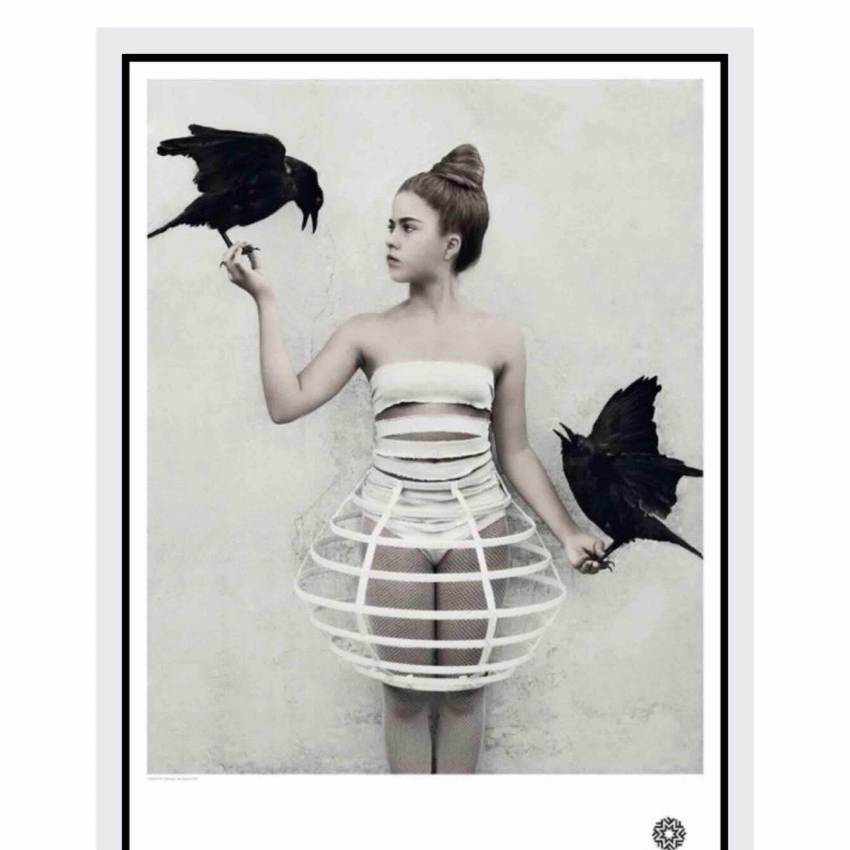 Poster från Fotografiska. Vee Spears, #5. Nypris 195 kr, har aldrig blivit upphängd och finns kvar i förpackningen. . Övrigt.