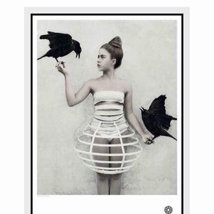 Poster från Fotografiska. Vee Spears, #5. Nypris 195 kr, har aldrig blivit upphängd och finns kvar i förpackningen.