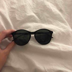 Svarta solgalsögon aldrig använda