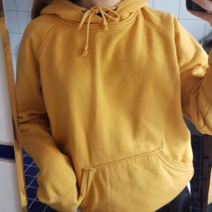 Mysig senapsgul hoodie köpt på bikbok för 300 kr. Ganska noppig och har några fläckar som inte går bort i tvätten, därav det låga priset. Köparen står för frakt men kan även mötas upp i stockholm.