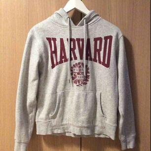 Harvard hoodie  100 kr (med frakt)
