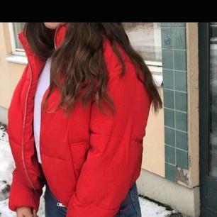 En röd kort dunjacka
