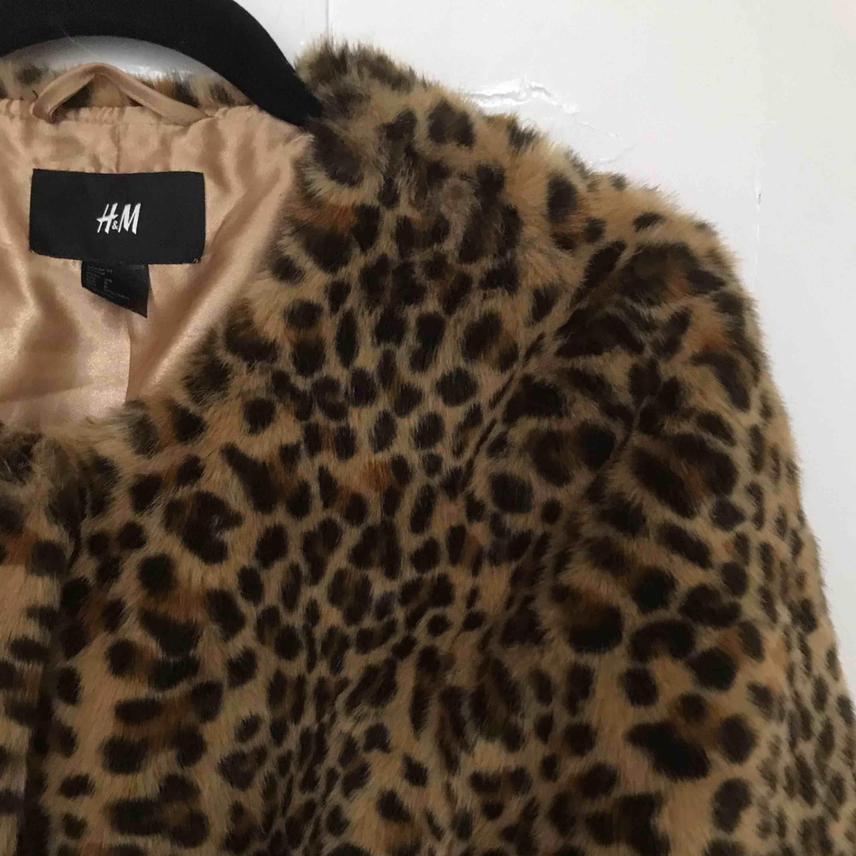 JÄTTEmysig leopardjacka från H&M. Perfekt till hösten!🍂 Skickar, men då tillkommer frakt. Möts även upp i Stockholm!. Jackor.