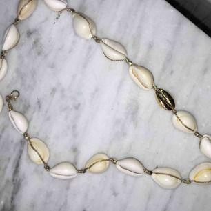 Puka Shell necklace köpt för 150kr~💞