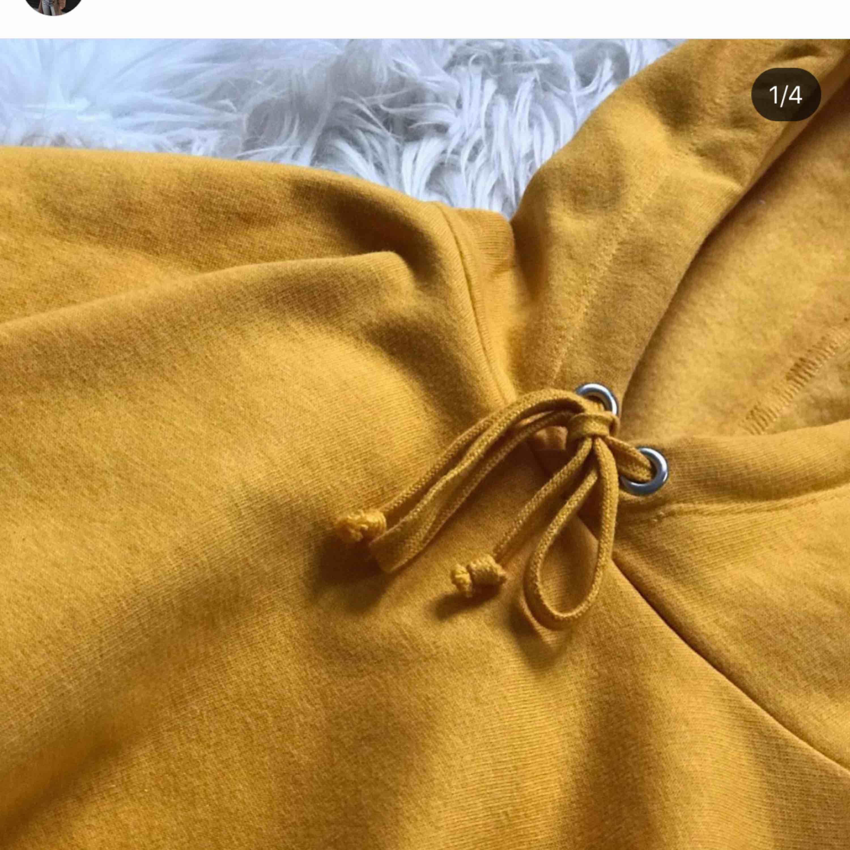 Fin senapsgul lite kortare hoodie strl S passar xxs-m Skickar mer bilder på i medelander. Huvtröjor & Träningströjor.