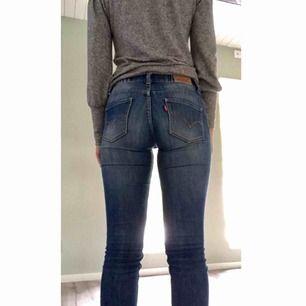 Mörka Levi's jeans. Står storlek 14 år, men passar mig som vanligtvis har 24/30 i Levi's jeans och XS/S i andra jeans. En skärphylsa är lite trasig, men det syns endast om man lyfter den och går bra att använda.