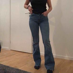 Super sköna, aldrig använda bootcut jeans från Cubus, köpta för 500kr. Stretchiga.