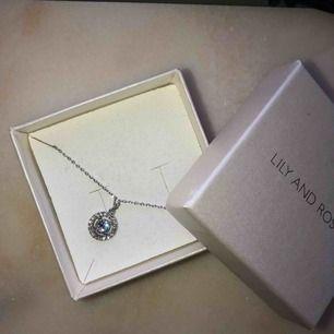 Halsband från Lily and Rose✨ Köpt för 295kr. Köparen står för frakten på 9kr!🥰