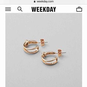 Helt oanvända örhängen i guld. Köpta på weekday nyligen.