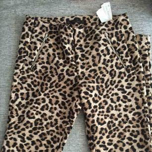 Leopard byx från Zara , stl 36.