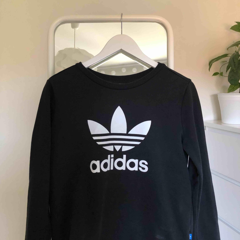 Skitsnygg sweatshirt från adidas i väldigt fint skick (knappt använd). Skulle säga att den är storlek S/M. Originalpris 650kr :)). Huvtröjor & Träningströjor.