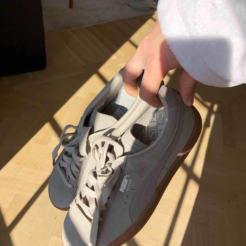 Säljer mina suede puma skor, aldrig använda pga att jag har så mycket andra skor. Köpta för ungefär 600 kr så säljer för hälften (bra pris!!!) 💖. Skor.