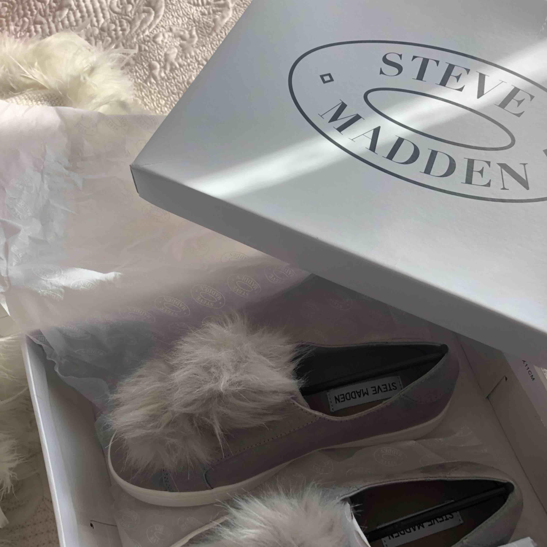 Skor från Steve Madden! Helt nya och oanvända. Kartong medföljer. Storlek 37. . Skor.