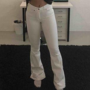 Snygga vita bootcut jeans från DrDenim. Använda men i mycket gott skick. Dock lite slitna längst ner pga att de varit för långa.