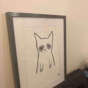katt affisch 40x50