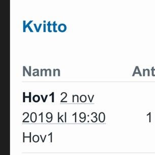 En vanlig ståplats biljett till Hov1 i Örebro