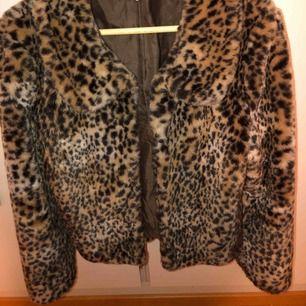 Jättesnygg leopard-päls från bikbok