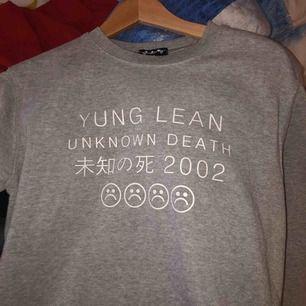 Grå tröja med Yung Lean-tryck. 150kr eller högsta bud. Köparen står för frakt.