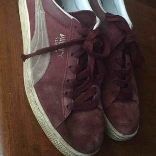 Puma skor, väl använda