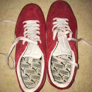 Röda puma blue bird skor i mocka. Använda 15 gånger, liten svart fläck på insidan annars skonsamt använda. Lite missfärgade skosnören, går naturligtvis att byta. Står att det är storlek 7,5=38 men passar 40/41. Frakt tillkommer.