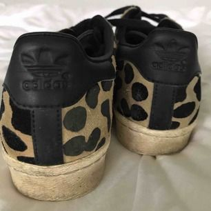 Adidas One star leopard skor