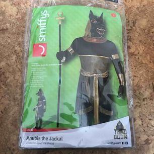 Halloween kostym Anubis egyptisk gud  Ingår hela kostymen, mask, Tunic, collar, armcuffs