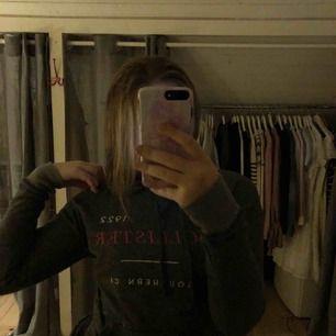 Supermysig grå hoodie från hollister! Aldrig använd, frakt tillkommer!❤️