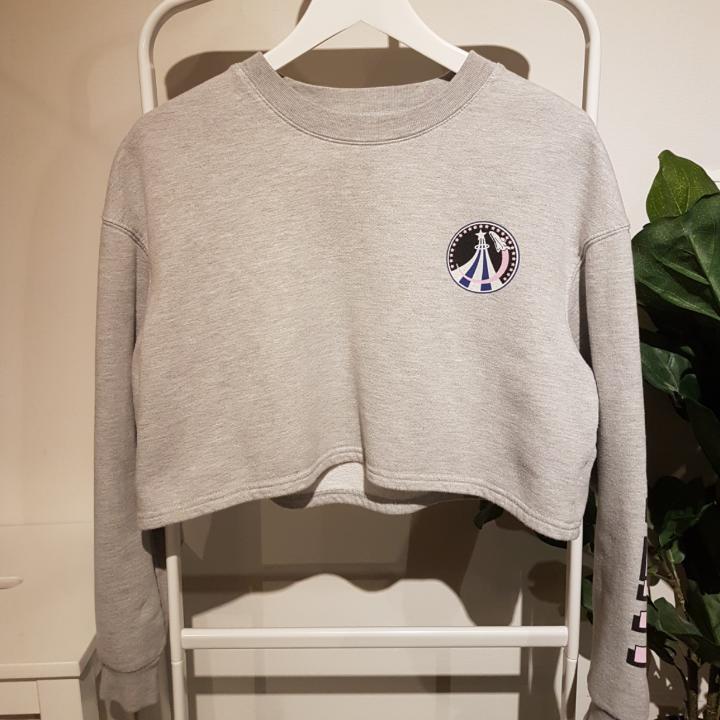 Croppad grå rymdinspirerad tröja från bikbok. Använd några gånger men är i nyskick och har inga skador. Frakt kostar 36 kr, men går även bra att hämta upp istället *:・゚✧. Tröjor & Koftor.