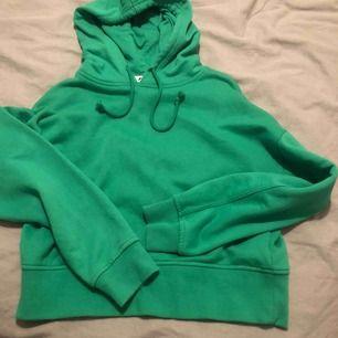 grön lite kortare hoodie. skulle säga att den e lite mer skrik grön i verkligheterna som inte framhävs på bilderna