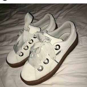 Puma skor! Aldrig använda pågrund av jag köpte fel storlek