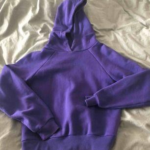 lilla hoodie, skriv för frågor