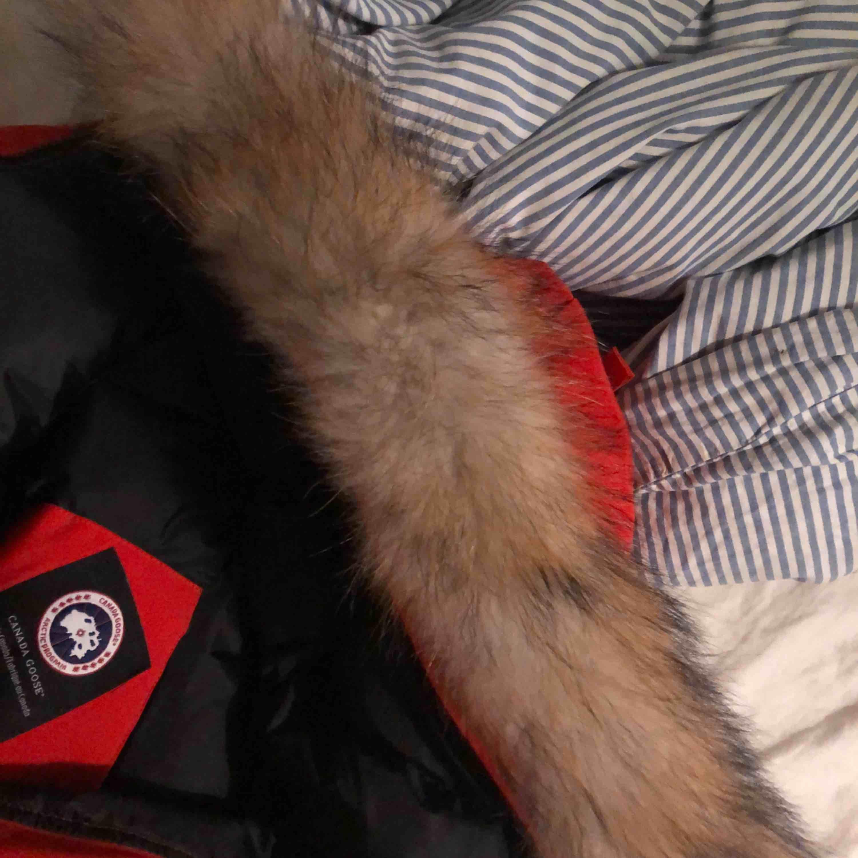 Röd canada goose modellen chilliwack bomber jacka i stl M men passar även S, avtagbar päls. ny skick, säljer pga använder tyvärr aldrig. Priset kan gå ner för snabb affär. Finns även fler bilder, har tyvärr tappat bort kvittot därav billiga priset. . Jackor.