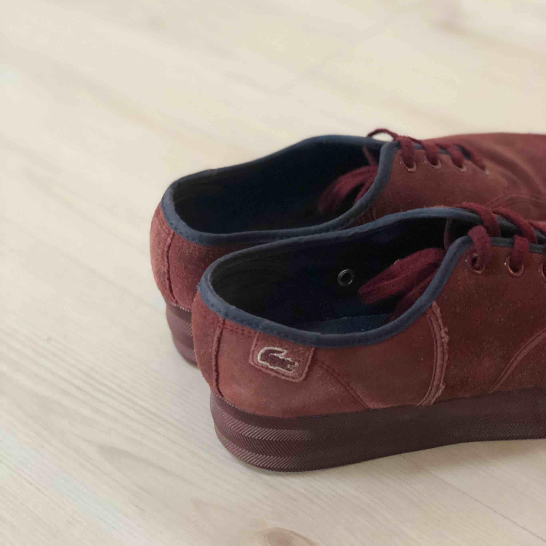 Lacoste sneakers suede. Använda. . Skor.