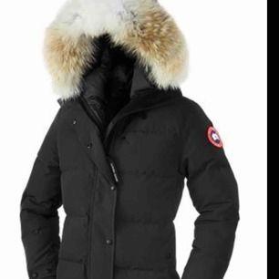 Söker en Canada goose shelburne xxs, hör av er om ni vet någon som säljer eller som ska sälja!