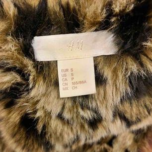 H&M leopard biker winter jacket size Small