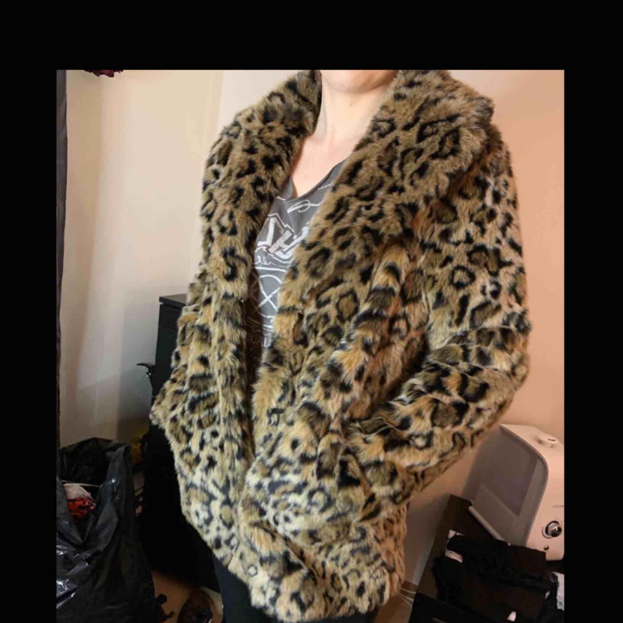 H&M leopard winter jacket size 36. Jackor.