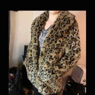 H&M leopard winter jacket size 36