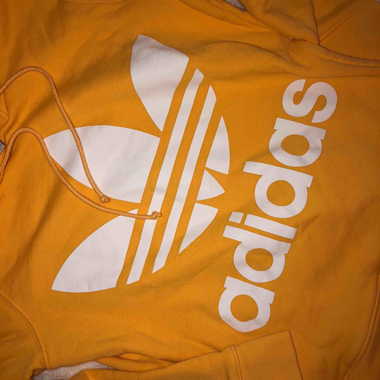 ursnygg gul adidashoodie med luva, köpt på adidasstore, mittenficka, använd fåtal gånger, bra kvalitet!. Huvtröjor & Träningströjor.