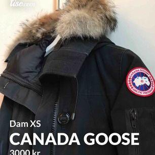 Säljer min Canada goose pågrund av att jag har ändrat min stil och vill sälja den nuuu! Köpte på NK