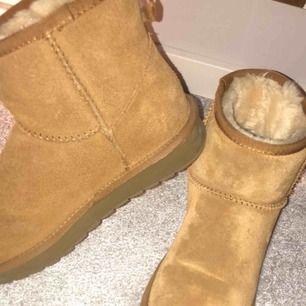 Skor från dinsko, använda förra vintern.